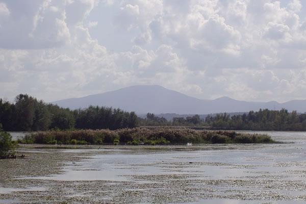 lago-oasi-alviano-wwf